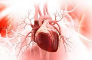 Como CardioTrust - diabetes funciona? Para que sirve?