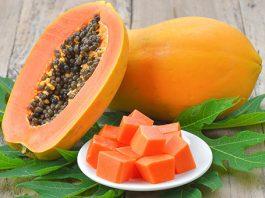 1. ¿Qué es la Papaya