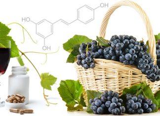 1. ¿Qué propiedades hacen que el resveratrol sea valioso?