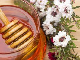 1. ¿Qué es la miel de Manuka?
