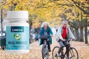 Incas Protect cápsulas, ingredientes, cómo tomarlo, como funciona, efectos secundarios